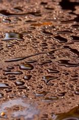 Drops on fresh asphalt, oil
