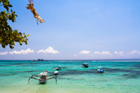 Beautiful tropical beach - Diving snorkeling paradise, Lembongan