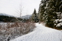 Lost Lake Trail, Whistler
