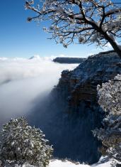 South Rim Snow