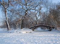 Leipzig Stadtpark Winter