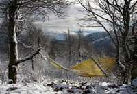 Yellow hammock