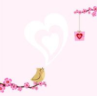 Valentine´s love bird. spring sakura