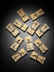 Cheese in Mousetraps