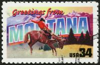 Montana bronco rider and mountains