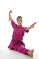 Wushu split