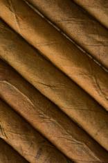 detail of cuban cigar