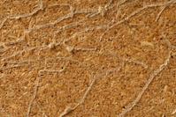 Vein Pattern Texture