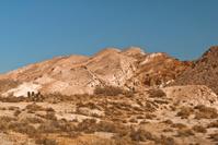 Mojave Desert View
