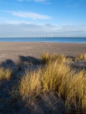 Wind turbines off the shore of Copenhagen