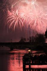 New Year Magic: Zurich 2009/10 firework display seen from Gemüse