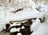 Quiet December Winter Landscape