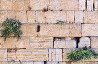 Stones of the Western Wall, Jerusalem