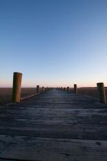 wooden pier or dock vanishing over the marsh