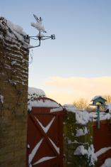 Dawn snow