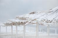 beach canopies under snow