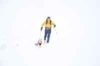 Man Ski Touring with Dog in Mountains