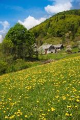 High altitude farming in the Alps