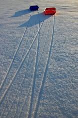 Sleds on snow (1)