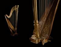 Golden harp 8