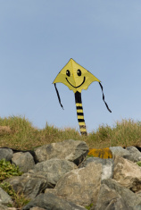 Happy face kite