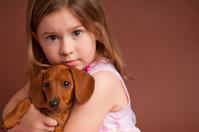 Little Girl Hugging Purebred Miniature Dachshund