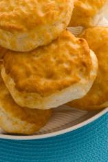 Biscuit close up