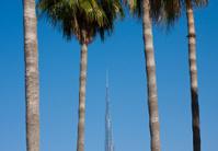 Burj Dubai Skyscraper behind palm trees