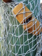Fishing Net II