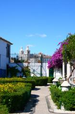 Colorful garden in Lisboa, Portugal