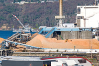 Tractor moving woodchips at pulp mill