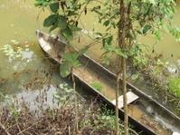canoe in a lagoon