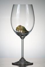 Kumamoto Oyster in Wine Glass