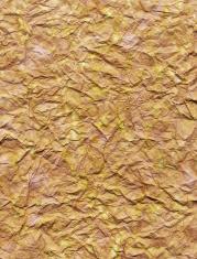 Distressed Wrinkled Paper