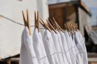 socks on a laundry line