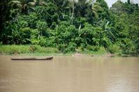 Jungle boat - Philippines