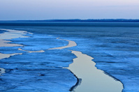 Ice Floes With Evening Light