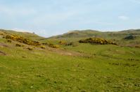 Hills behind Hayle Brae