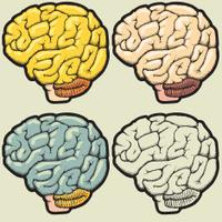 Assorted hand drawn brain illustrations
