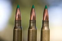 three hollow tips 308 bullets