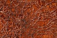 Abstract Vein Texture