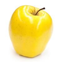 Shiny Golden Delicious Apple