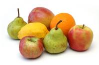 Fruit Series 5