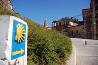 Way to Compostela