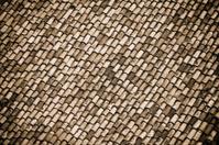Milan City - Roof Closeup, Sepia Toned