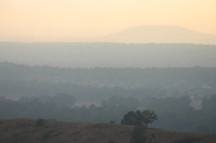 Dawn over the Hunter Valley