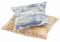 Decor-Two Pillows