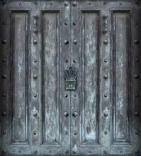 Big solid iron protected door