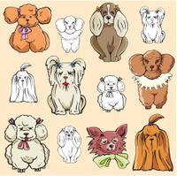 Pet Illustrations III: Puppies (Vector)