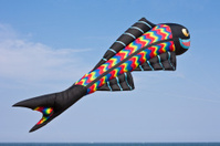 fish Kite